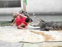 Krokodyla przedstawienie przy krokodyla gospodarstwem rolnym Obrazy Royalty Free