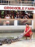 Krokodyla przedstawienie przy krokodyla gospodarstwem rolnym Fotografia Royalty Free