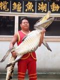 Krokodyla przedstawienie przy krokodyla gospodarstwem rolnym Obraz Royalty Free