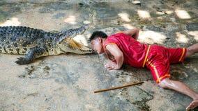 Krokodyla przedstawienie przy Samut Prakan krokodyla gospodarstwem rolnym Obraz Stock