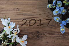 Krokus en Hyacint, Tekst 2017 Stock Foto
