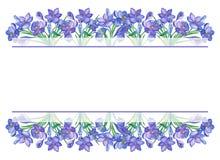 Krokus Violet Watercolor stock abbildung