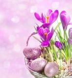 Krokusblumen über unscharfem Hintergrund Lizenzfreie Stockfotos