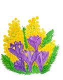 Krokusse und Mimose Lizenzfreies Stockbild