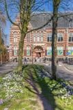 Krokusy przed poprzednim Groningen muzeum zdjęcie royalty free