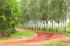 Kromme bij de landweg van een landbouwbedrijf met bandsporen op grond stock foto's