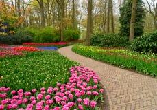 Kromme van weg in tuin Royalty-vrije Stock Foto's