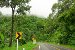 Krommeweg en regenwoud in de berg van Azië Royalty-vrije Stock Foto