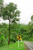 Krommeweg en regenwoud in de berg van Thailand Royalty-vrije Stock Foto