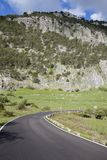 Kromming op Open Weg in Grazalema Nationaal Park Stock Foto's