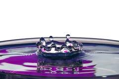 Krona av en fallande droppe Arkivbild