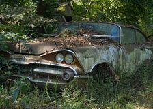 Krona för 1959 Dodge Arkivbild