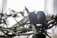 Kronan av taggar och spikar arkivfoton