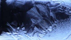 Kronblad av de djupfrysta vattenvindarna på exponeringsglaset stock video