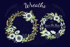 Kronen bloemen Stock Fotografie