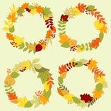 Kronen en kaders van de herfst de de bosbladeren Stock Foto's
