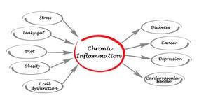 Kronisk inflammation royaltyfri illustrationer