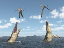 Kronosaurus attacks Pteranodon. Computer generated 3D illustration with the extinct pliosaur Kronosaurus and the extinct pterosaur Pteranodon Stock Photos