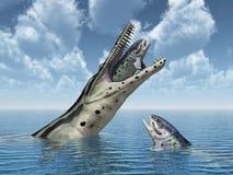 Kronosaurus attacks Rhizodus Stock Images