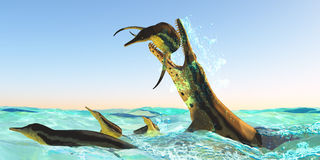 Kronosaurus Marine Reptile Attack Royaltyfria Foton