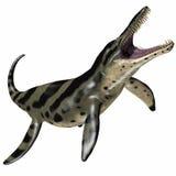 Kronosaurus på vit Arkivbilder