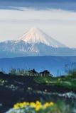 Kronotskaya Sopka - active volcano on Kamchatka Peninsula. Summer volcanic landscape of Kamchatka Peninsula: view of active Kronotsky Volcano (Kronotskaya Sopka stock photo