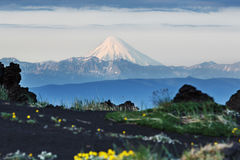 Kronotsky Volcano - active volcano in Kamchatka Peninsula. Beautiful summer volcanic landscape of Kamchatka: view of active Kronotsky Volcano (Kronotskaya Sopka stock photo