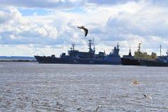 Kronstadt,在码头的军舰 免版税库存图片