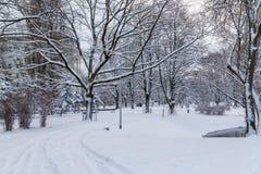 Kronvalda parkerar i centrala Riga i vintern fotografering för bildbyråer
