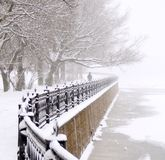 Kronverk embankment. In Saint Petersburg at snowfall stock photos
