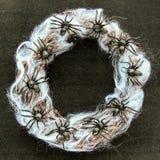 Kroon van berkeroeden met spiderweb en zwarte rubberspinstuk speelgoed spinnen op een zwarte fluweeldocument achtergrond Donker H royalty-vrije stock afbeelding