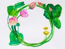 Kroon van bloemen, bladeren, knoppen en lotusbloembloemen Waterverf sk royalty-vrije illustratie