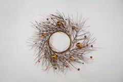 Kroon van droge takken van een boom die met ballen wordt verfraaid Stock Foto's