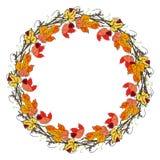 Kroon van hand getrokken lijsterbes en de herfstbladeren op een witte achtergrond stock illustratie