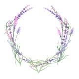 Kroon van lavendel stock illustratie