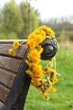 Kroon van paardebloemen Stock Foto's