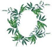 Kroon van waterverf de groene takken, groen bloemenkader royalty-vrije illustratie