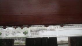 Kropelki deszcz po burzy obrazy royalty free