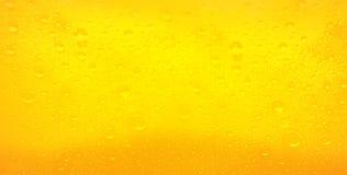 Kropelki na świeżo polanym piwie Obrazy Stock