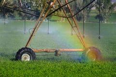Kropidła Iryguje uprawy pole Uprawia ziemię adra bujny zieleń z obrazy royalty free