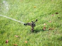 Kropidło nawadnia trawy w ogródzie Zdjęcia Stock