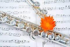kropka na flecie Obrazy Royalty Free