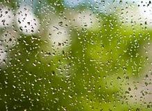 kropla deszczu Zdjęcia Stock