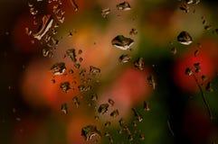 kropla deszczu Zdjęcie Stock