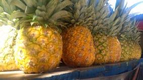 Kropla miodowy ananas! obraz royalty free