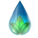 Kropla woda z liśćmi Zdjęcia Royalty Free