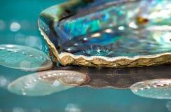 Kropla wodny pluśnięcie w paua kolorowych skorupach obraz stock