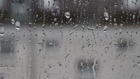 Krople deszcz na szkle, deszcz opuszczają na jasnym okno zbiory wideo