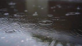 Krople deszczu wpadają w kałużę w mieście zbiory wideo