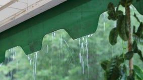 Krople lato padają na szkle podczas prysznic zbiory
